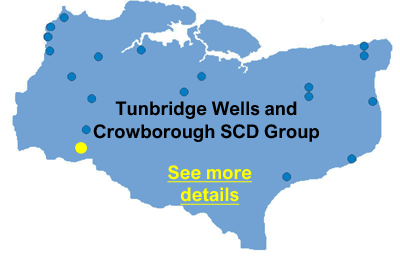 Tunbridge Wells and Crowborgh SCD Group